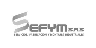 Logotipo en gris de SEFYM